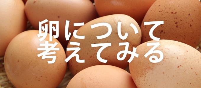 卵について考えてみる
